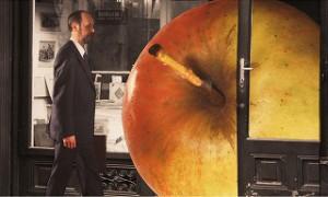 『サヴァイヴィング ライフ ー夢は第二の人生―』の画像